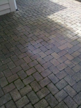 Mossy Moldy Brick Paver Patio