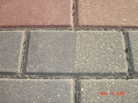 Faded Concrete Brick Pavers left side Sealed, right side no sealer